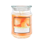 Mega Candles - 18 oz. Country Dreams Scented Jar Candle - Peach